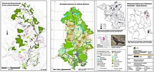 Biotopverbundplanung Landkreis Oberhavel